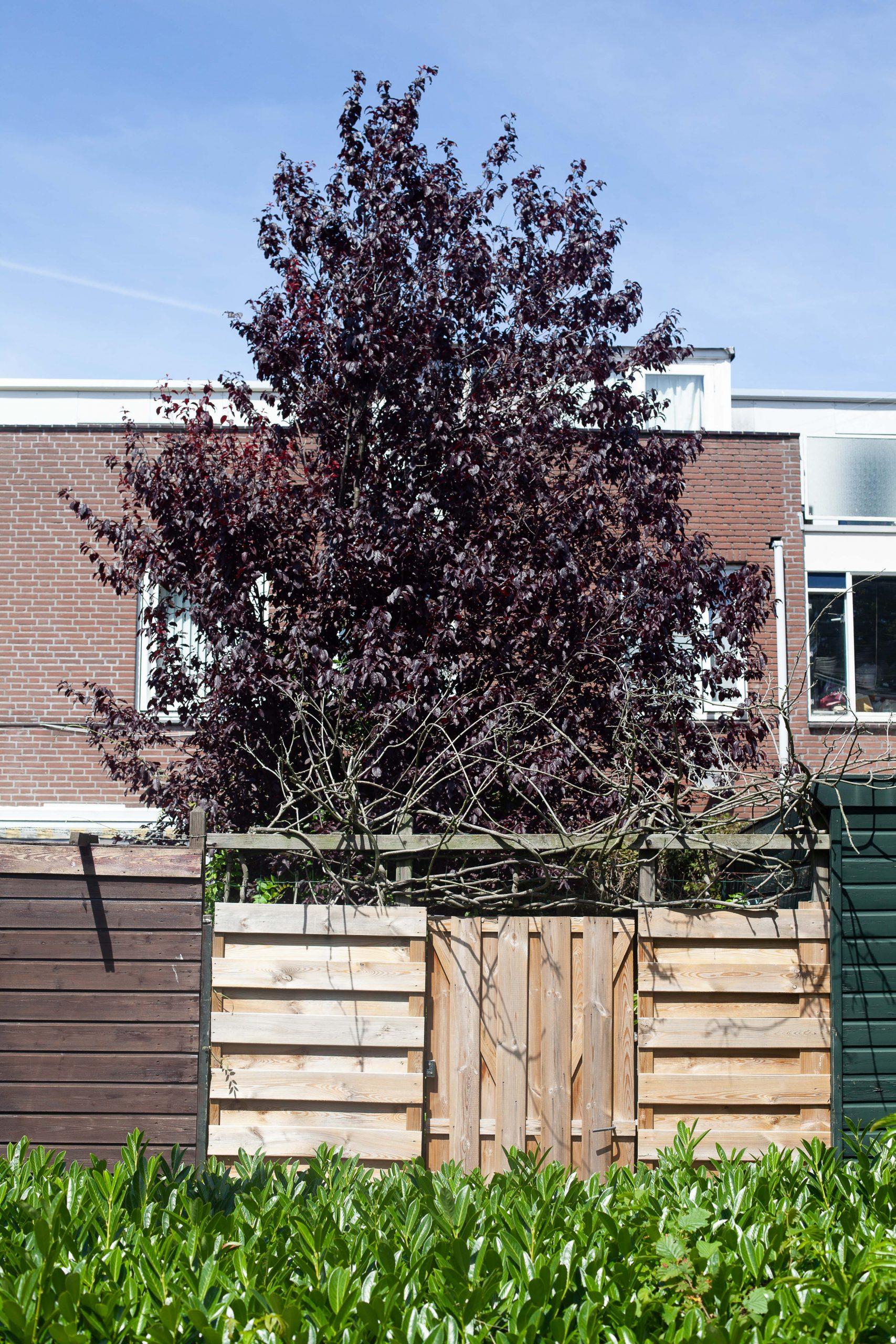 Den Haag Community Builders (368 of 401)
